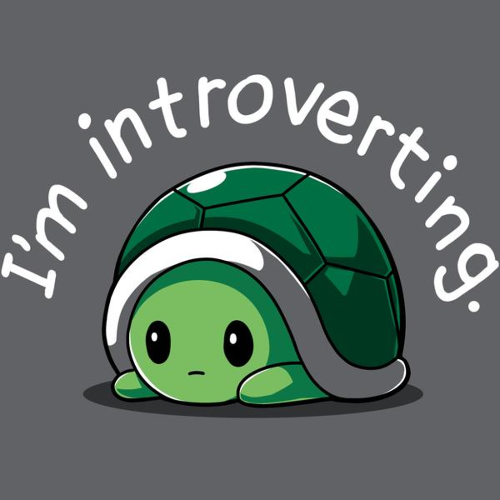 TeeTurtle: I'm Introverting