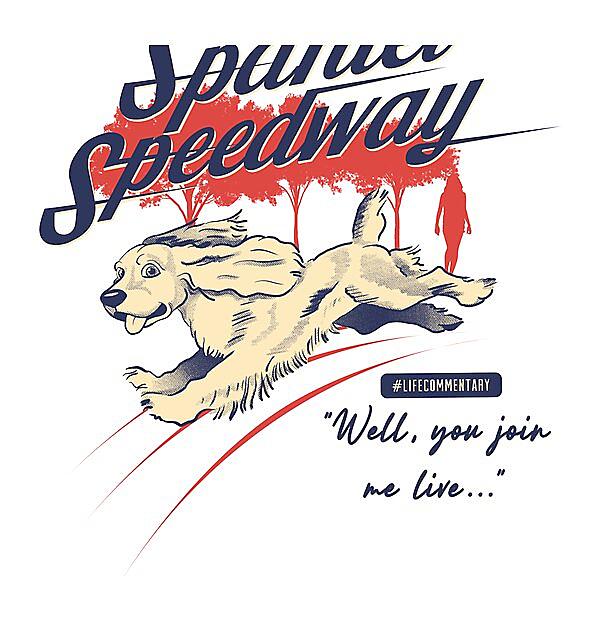 RedBubble: Spaniel Speedway #LifeCommentary v2