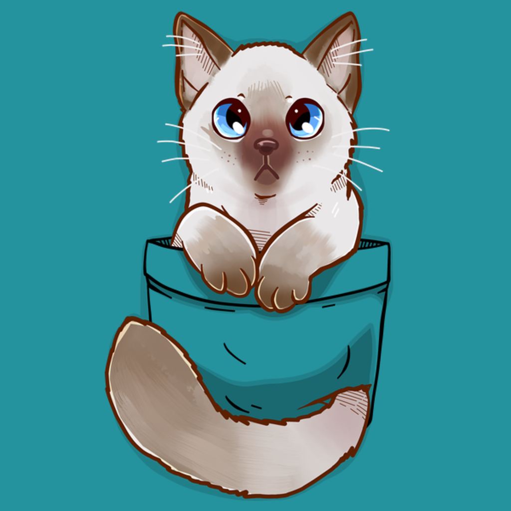 NeatoShop: Pocket Cute Ragdoll Kitten