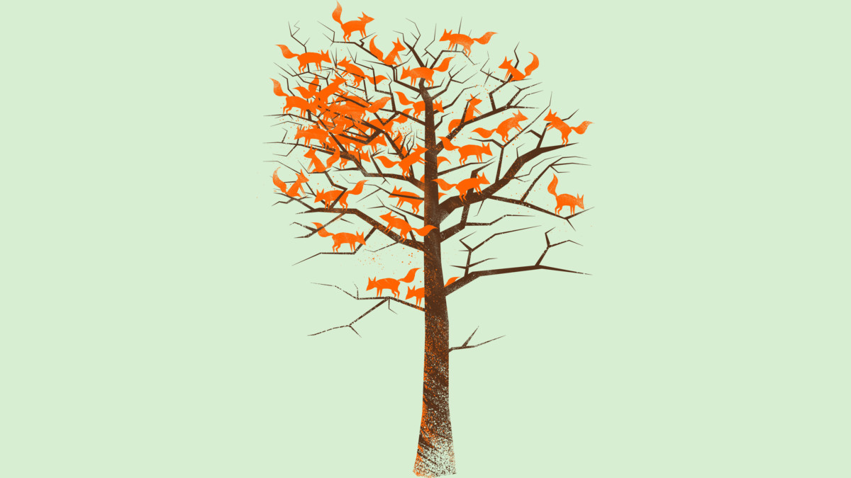 Design by Humans: Blazing Fox Tree