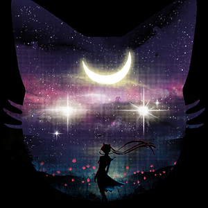 Qwertee: Beautiful Moonlight