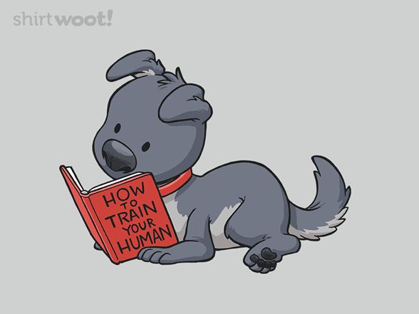 Woot!: Training