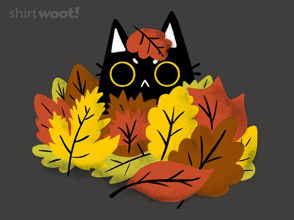 Woot!: Cat in Leaves