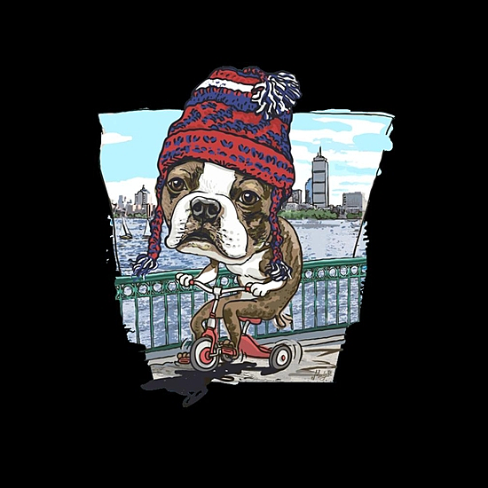 BustedTees: Boston Terrier WICKED Pissah Tricycle Adventure
