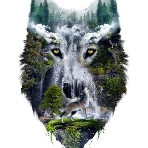 Qwertee: Wolves
