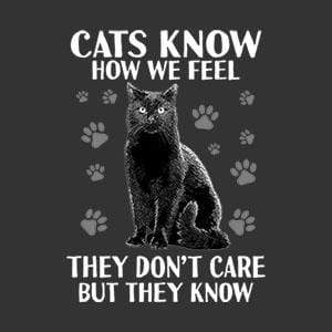 BustedTees: Cats Know How We Feel