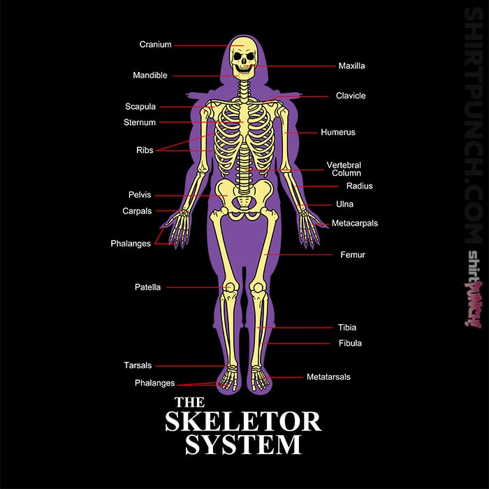 ShirtPunch: The Skeletor System