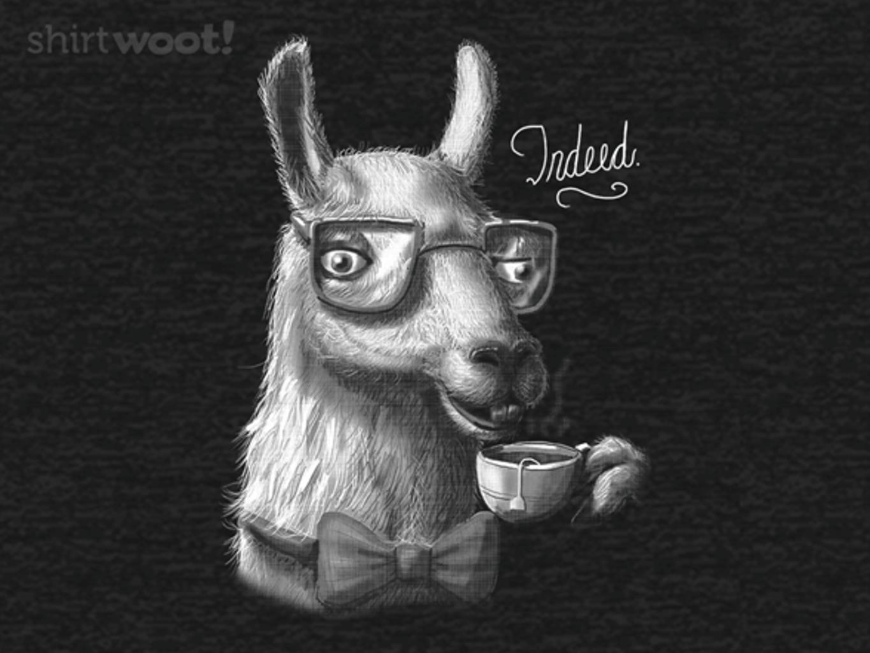 Woot!: The Fancy Llama - Remix