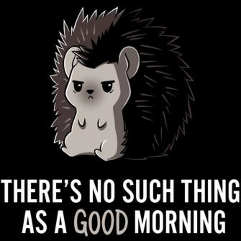 TeeTurtle: Good Morning