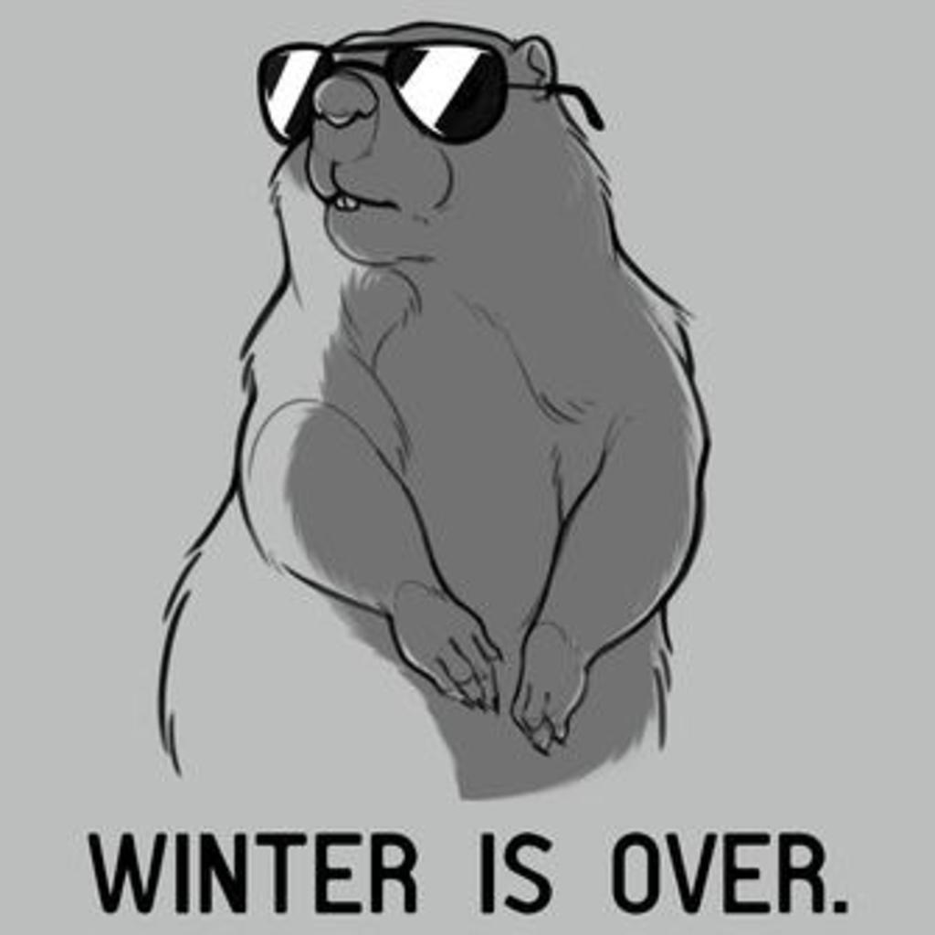 TeeTurtle: Winter Is Over