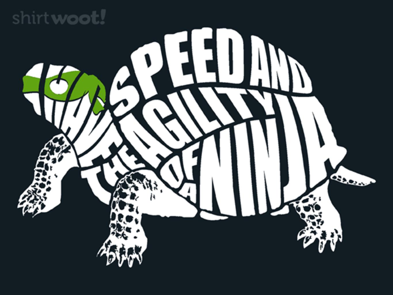 Woot!: Turtle Power