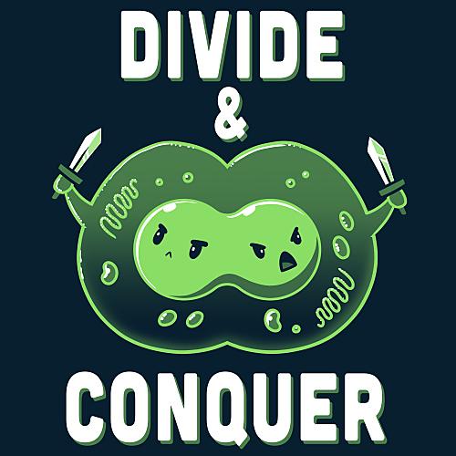 TeeTurtle: Divide & Conquer