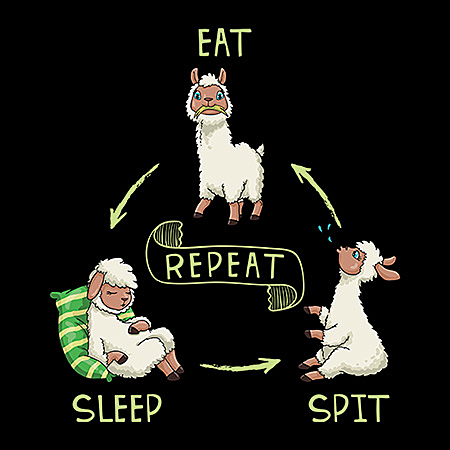 MeWicked: Eat, Sleep, Spit, Repeat - Funny Llama