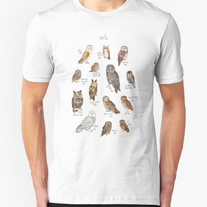 RedBubble: Owls