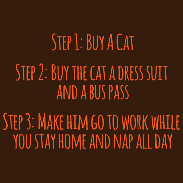 NeatoShop: Buy A Cat