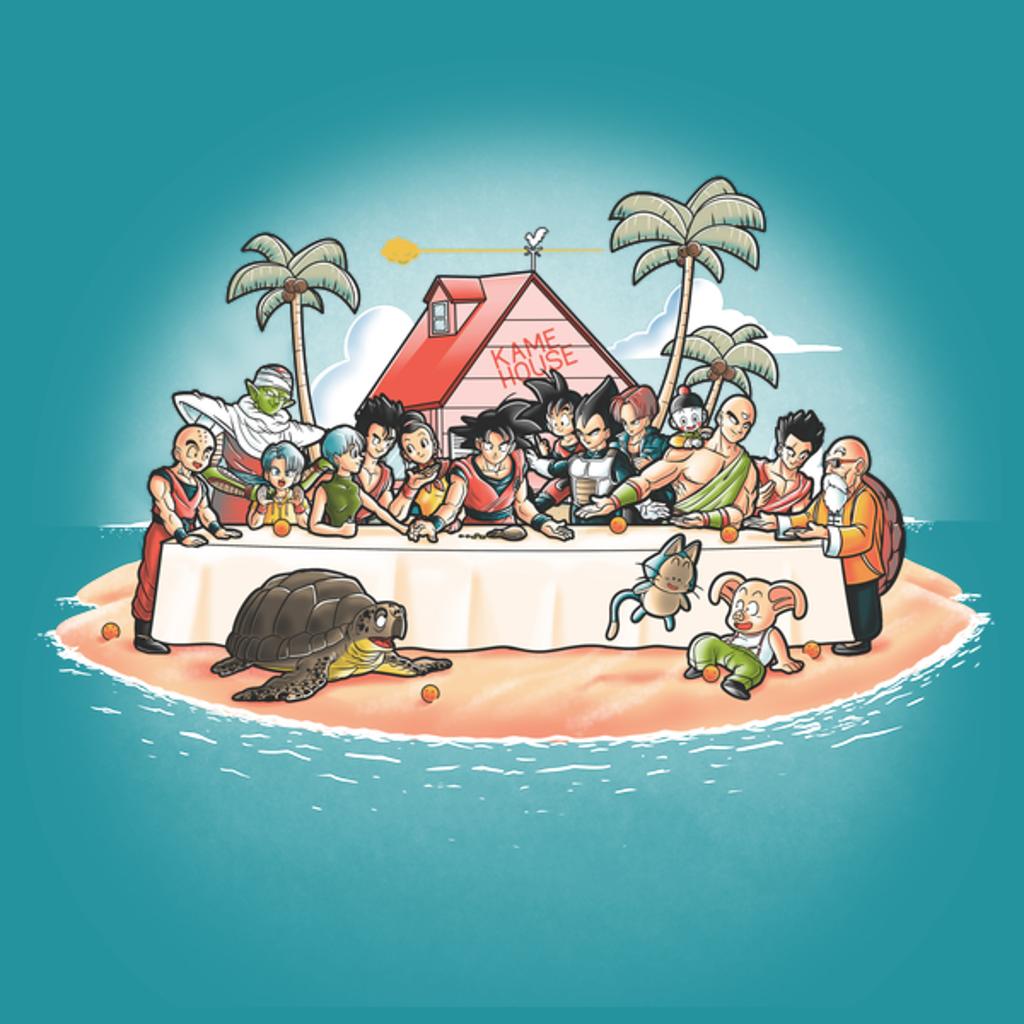 NeatoShop: Kame dinner
