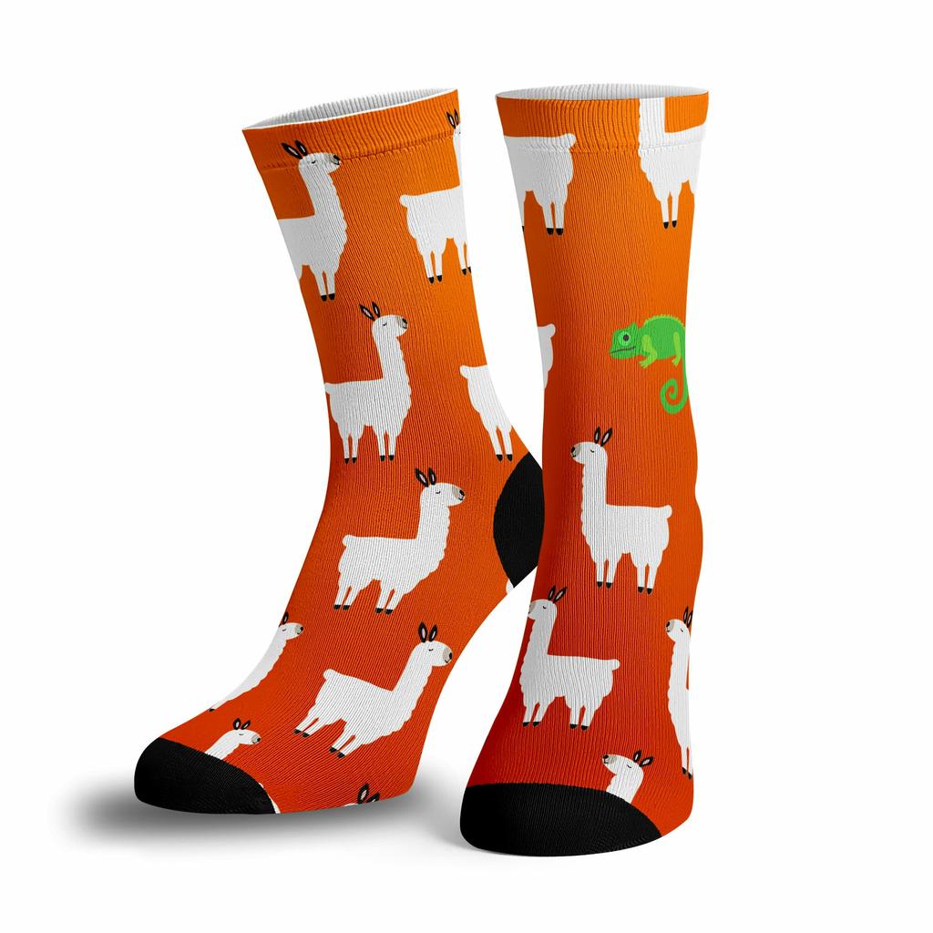 BustedTees: Llama Llama Chameleon Socks