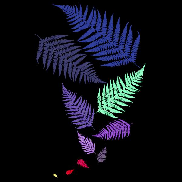 NeatoShop: Ferns