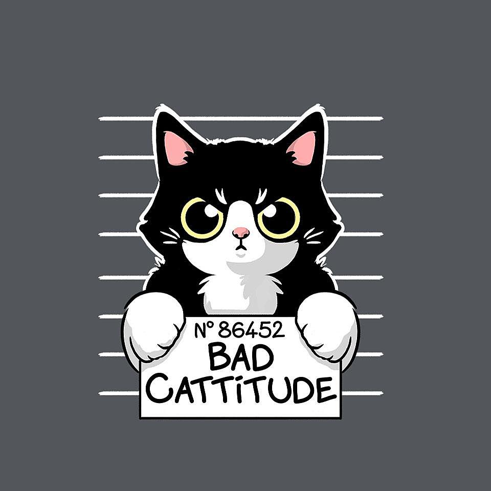 TeeFury: Bad Cattitude