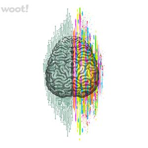 Woot!: The Mind- Brain Dichotomy