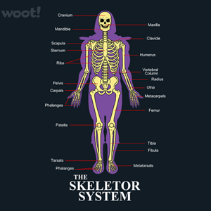 Woot!: The Skeletor System