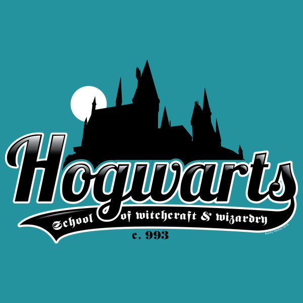 NeatoShop: School of wizardy castle