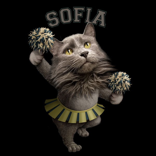 NeatoShop: SOFIA