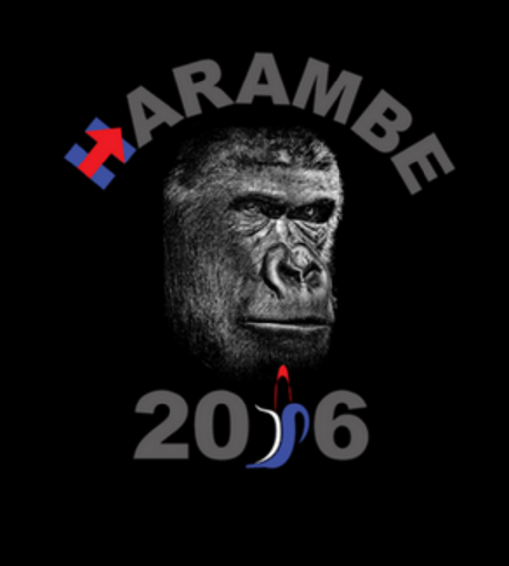Shirt Battle: Harambe 2016