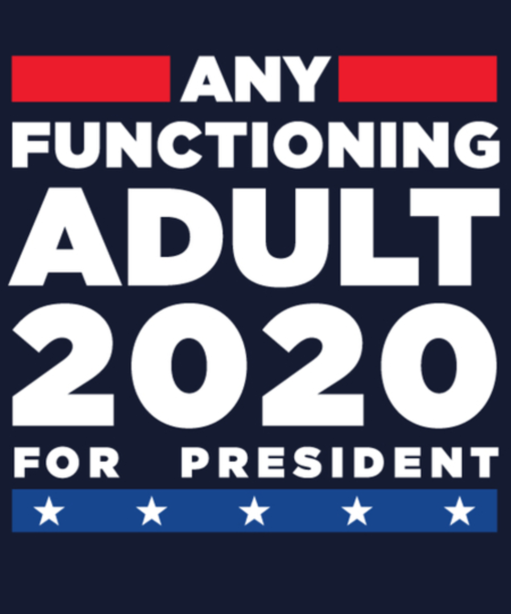Qwertee: Any Functioning Adult 2020
