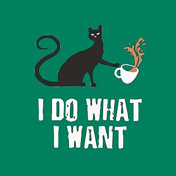 BustedTees: I Do What I Want Funny Cat Kitty Kitten T Shirt