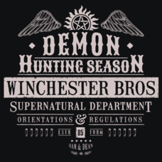 Textual Tees: Demon Hunting Season