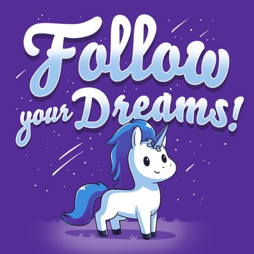 TeeTurtle: Follow Your Dreams!