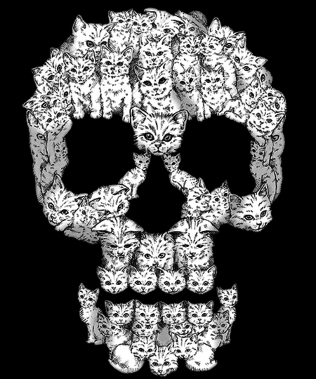Qwertee: Skulls Are For Pussies