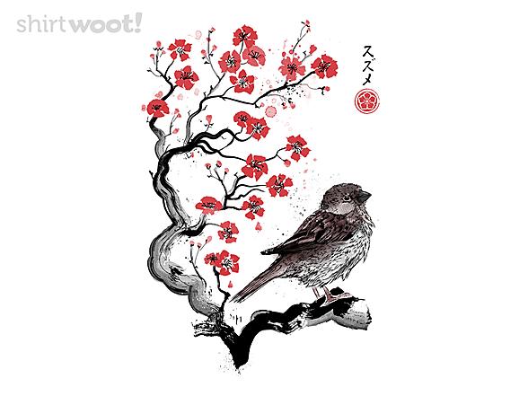 Woot!: Little Sparrow