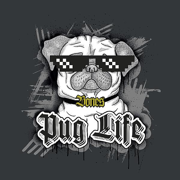 NeatoShop: Pug Life