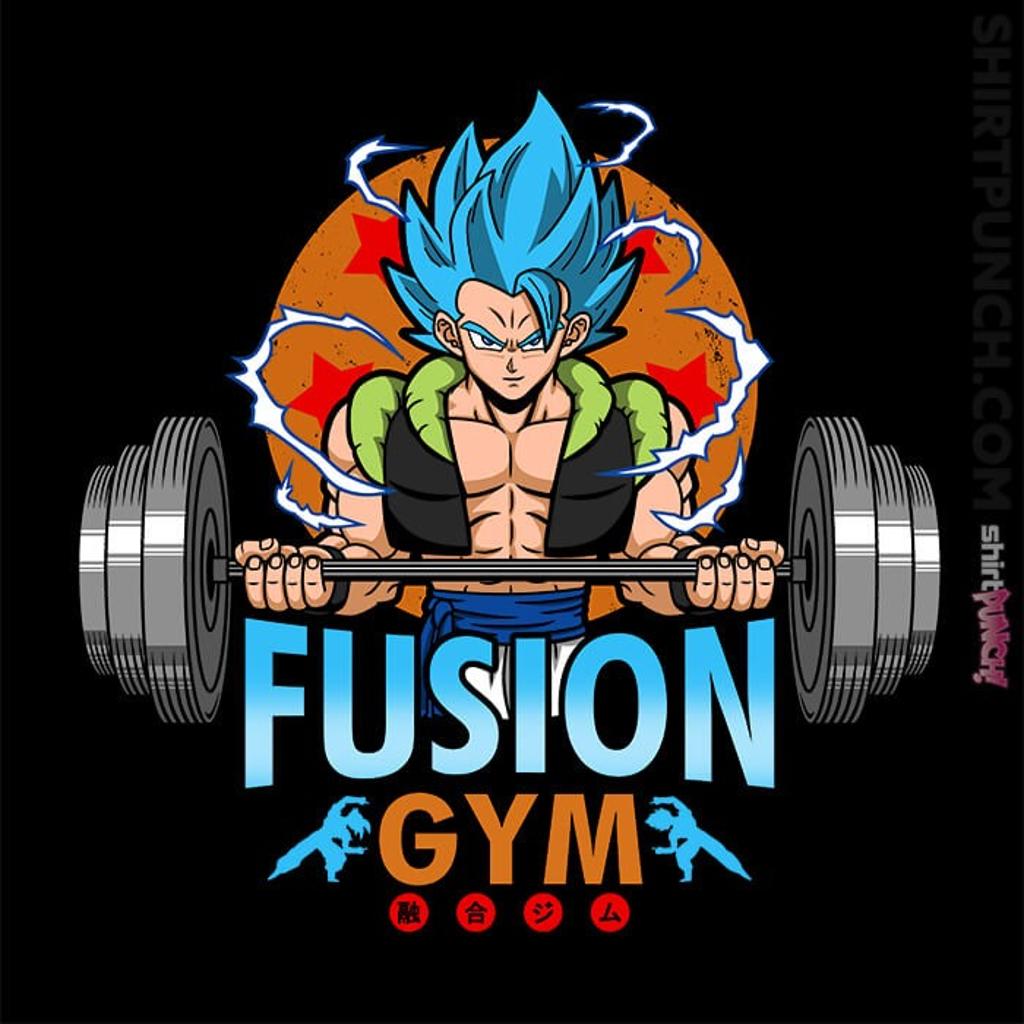 ShirtPunch: Fusion Gym
