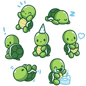 TeeTurtle: Limited Edition 2019 TeeTurtle Birthday Shirt