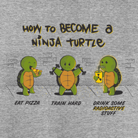 GraphicLab: Guide To A Turtle