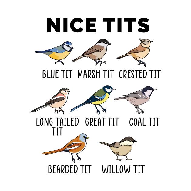 TeePublic: Nice Tits Funny Birdwatcher Pun Gift Bird Enthusiastic