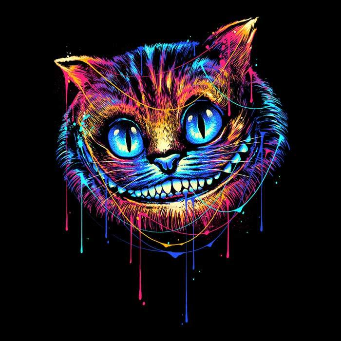Once Upon a Tee: Colorful Cat
