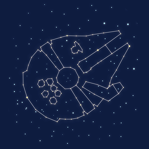 Radish Apparel: Star Falcon Constellation
