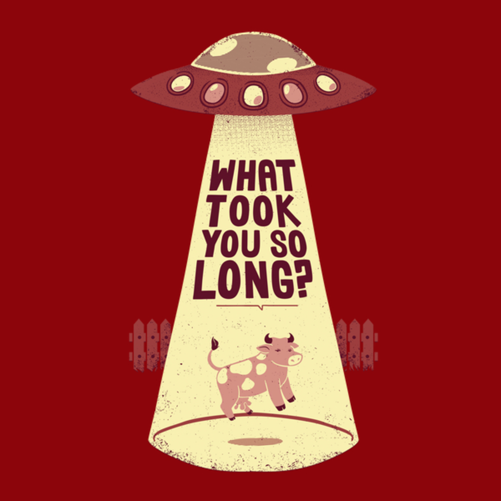 NeatoShop: Why Did You Took So Long Alien Funny T-shirt