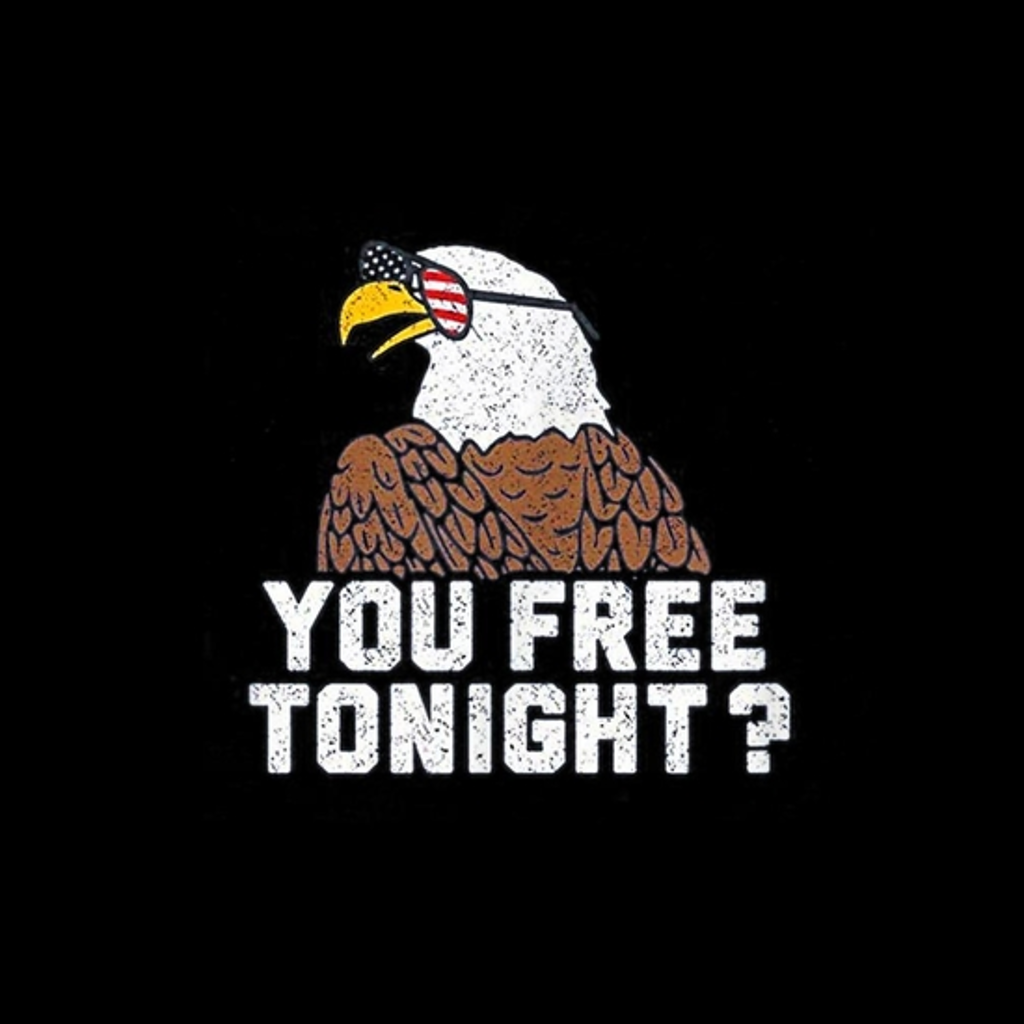BustedTees: USA Patriotic Eagle