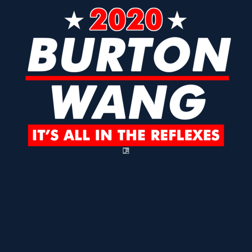 NeatoShop: Burton and Wang 2020 Presidential Election