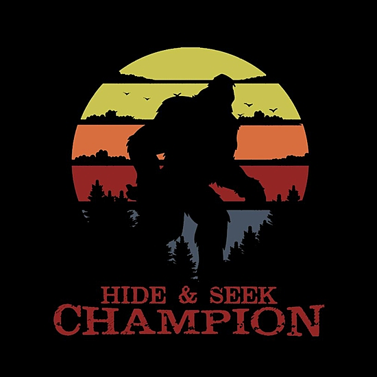 BustedTees: Hide And Seek Champion