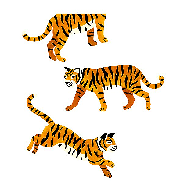 RedBubble: Bengal Tigers - Navy