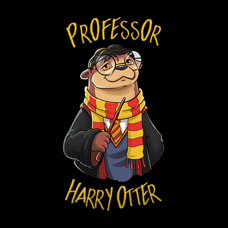 MeWicked: Professor Harry Otter