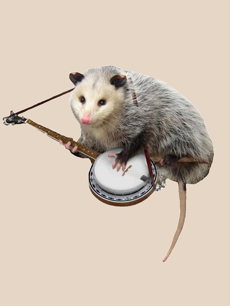 RedBubble: Possum Playing Banjo