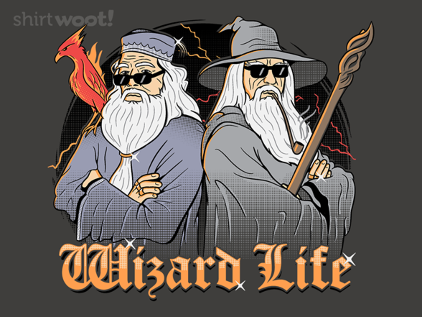 Woot!: The Wizard Life