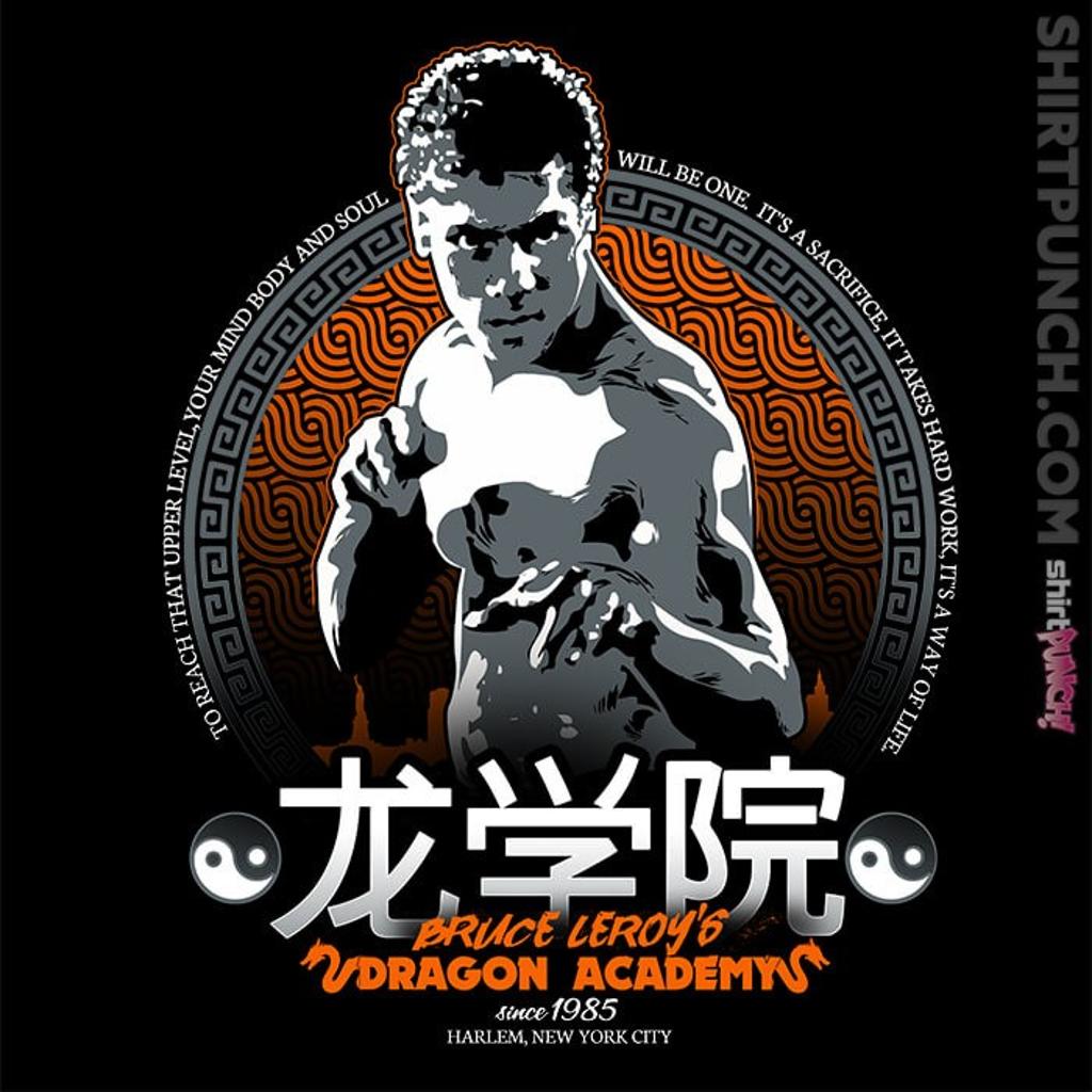ShirtPunch: Dragon Academy